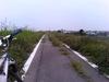 Tonegawa_cw